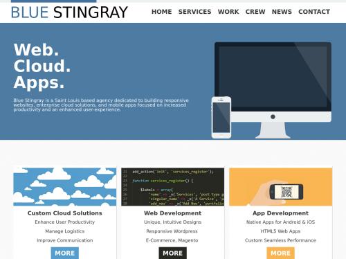 http://www.bluestingray.com startup