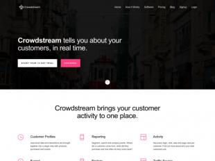 http://crowdstream.io startup