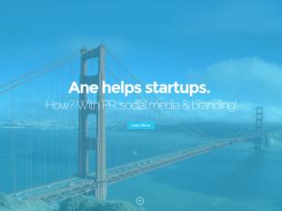 http://anehelpsstartups.com/ startup